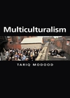 Multiculturalism a civic idea