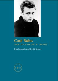Cool rules anatomy of an attitude