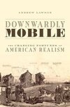 Downwardly mobile the changing fortunes of American realism