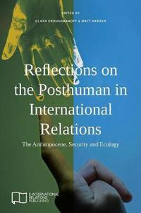 Reflections on the posthuman in international relations: the anthropocene, security and ecology